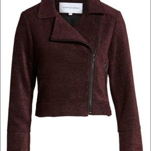 BRAND NEW Cupcakes and Cashmere Moto jacket